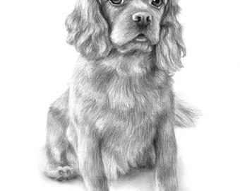 Custom Pet Portrait, Dog Drawing, Custom Dog Portrait, Cat Portrait, Dog Lover Gift, Pet Memorial, Custom Pet Drawing, Charcoal Drawing