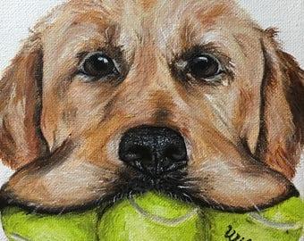 "6""x6"" Custom Painted Acrylic Pet Portrait (single pet)"