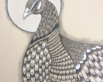 dessin original paon animal oiseau art