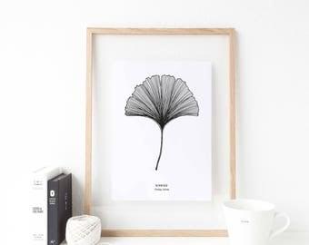 Botanical Poster / Affiche Scandinave / Ginkgo Leaf Poster / Scandinavian Print / Modern Poster / Printable Art