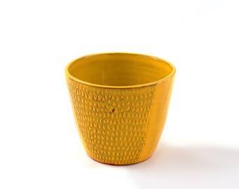 Yellow Beaker