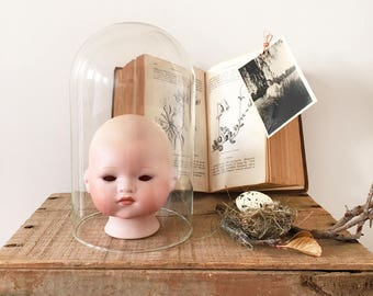 Porcelain Doll Head - natural history - assemblage collage art cabinet of curiosities - bohemian eclectic home decor style antique #0791
