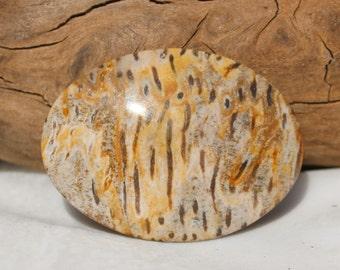 Beautiful Palm Wood Cabachon/Handmade/47mm x 34mm 5mm