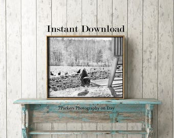 Farm Animal Download; Chicken Print; Modern Farmhouse Wall Decor; Instant Downloads; Printable Wall Art; Home Decor Art; Country Kitchen Art