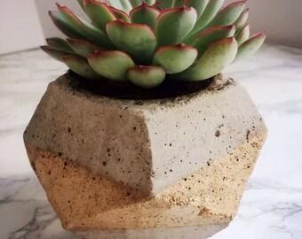 Concrete / concrete planter / flower pot