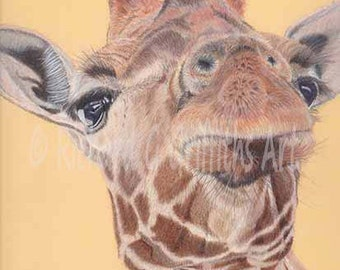 A4 Print Giraffe from Original Drawing Ummounted.
