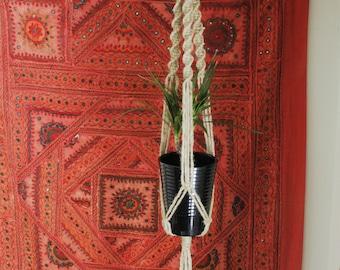 Natural Spiral Plant Hanger