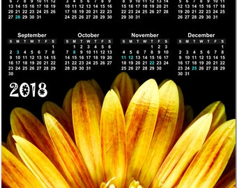 """Yellow Daisy Flower 2018 Full Year View 8"""" Calendar - Magnet or Wall #3867"""
