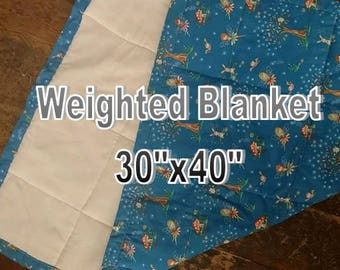 """COMPLETELY CUSTOM Weighted Blanket 30"""" by 40"""""""