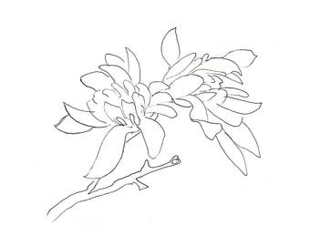 Magnolia 8X10 or 12x18 Giclee Art Print, Minimalist Gesture Line Drawing in Ink - Flower, Blossom, Tree, Floral
