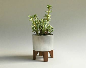 Mid Century Modern Inspired Succulent Planter in Metal and Wood