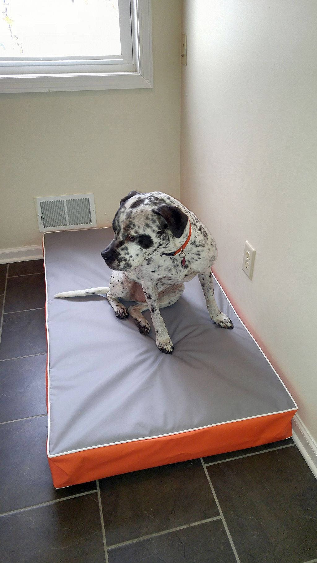 Dog Bed Fits A Baby Crib Mattress Dig Proof Cover Mildew