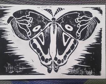 4x6 Moth Block Print
