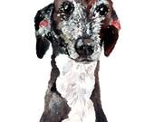 Portrait animalier personnalisé, tableau 8 x 10, art original, tirage