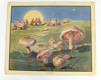 Vintage School Poster, Toadstools, Fungi, Autumn decor, Classroom poster, Eileen Soper print, Countryside Nature Print