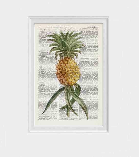 Pineapple decor giclee print art Hipster Pineapple  Printed on Vintage Dictionary natural history study, Biological BFL216