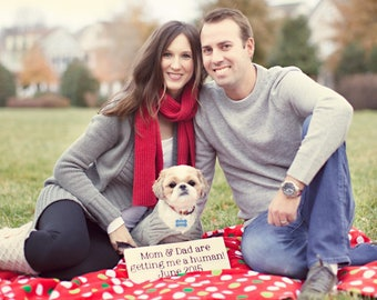 Custom Pregnancy Announcement Sign:  Photo Prop, Keepsake, Include the Dog or Sibling