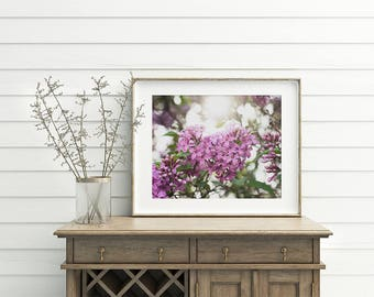 Gift for Her, Shabby Chic Lilac Photo, Lilac Print, Lilac Photograph, Floral Spring Decor, Lilac Art, large bedroom art, purple wall art