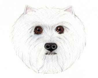 Westie Card - West Highland White Terrier