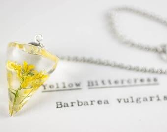 Yellow Bittercress (Barbarea vulgaris) Herbalism Pendulum, Green Witch, Wiccan Tools, Earth Pendulum, Yellow Flower Resin, Wildflowers