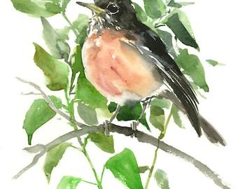 American Robin, wall art, original watercolor, painting, bird art, bird lover, gift, bird artwork, robin artwork