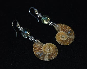 Beautiful Burnt Honey Color Ammonite Earrings