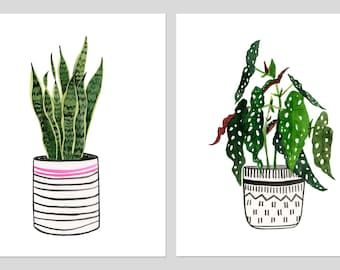 "Two Print Set: ""Begonia Maculata"" & ""Sansevieria"" Archival Prints by Lindsay Gardner"