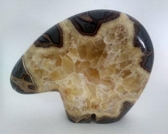 Septarian Nodule Bear Zuni Style Good Luck Bear Dragon Stone Bear Fetish Septarian Mt. Carmel Utah  SNZB1