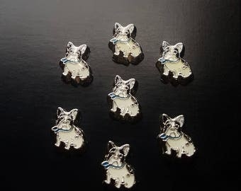 Boston Terrier Floating Charm for Floating Lockets-Gift Idea