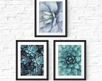 Botanical print set, Set of 3 prints, Succulent print, Printable art, Cactus print, Succulent printable, Set of 3 wall art, Digital download