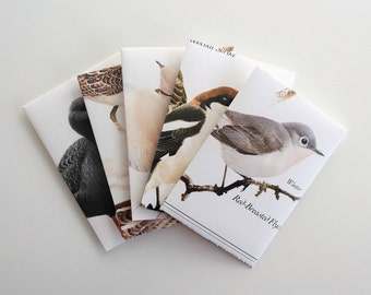 Handmade Cards, Handmade Envelopes, Recycled, Junk Journal, Mail Art, Snail Mail, Blank Cards, Card Set, Birds, British Wildlife, Nature
