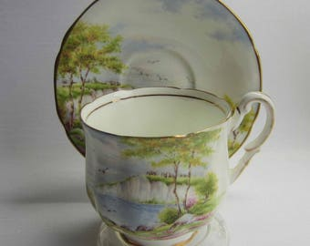 Paragon CLIFFS OF DOVER Trim Bone China Tea Cup and Saucer
