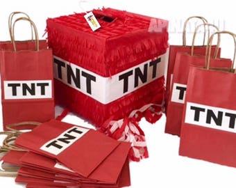Fast Shipping TNT Pinata & 16 Pk Goodie Bags