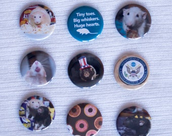 """Martin """"Marty"""" Mouse Presidentshul Edition - Pinback Buttons or Strong Ceramic Buttons - Supports the Ottawa Rat Rescue"""
