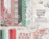 Cacti And Succulent, Best Value Bundle, Southwest Decor, Digital Scrapbooking, Vintage Orchid Flower, Tropical Party, Mexican Landscape