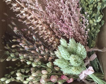 Bloomery Blend No. 0034: Mixed Dried Mini Flower Bunches /  Pink - Green