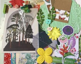 Botanical junk journaling kit, snail mail kit, diy inspiration kit, scrapbooking, paper embellishment kit, card making, craft pack