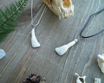 Elk Tooth Necklace - Real Bone