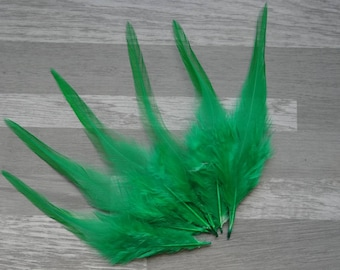 Set of 20 emerald green dyed Rooster feathers