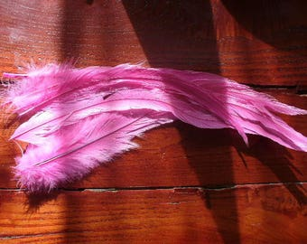 SET OF 10 FUCHSIA TAIL102 ROOSTER FEATHERS