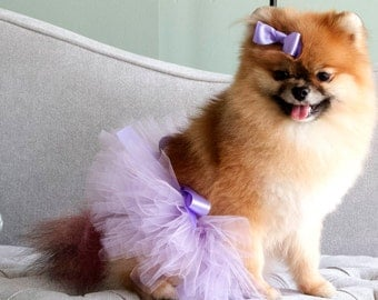 Purple dog tutu, Cute dog outfit, Bling pet costume, dog photo shoot outfit, wedding costume, cute puppy outfit, custom pet outfit