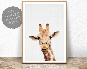 Giraffe Print, Safari Nursery Animal Wall Art, Large Printable Poster Digital Download, Boys Room Decor Baby Shower Decoration Giraffe Photo