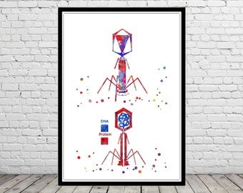 Bacteriophage virus, watercolor bacteriophage, biotech wall art, medical art, microbiology bacteria art, biology microscopy science decor