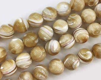 12mm Round Shell Beads ,Natural Shell Beads , Shell Beads,  Jewelry Shell Beads , DIY shell  beads , 15.5 inch Strand
