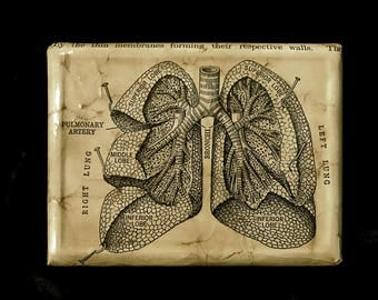 ID Cigarette Case / Lungs Anatomy Vintage