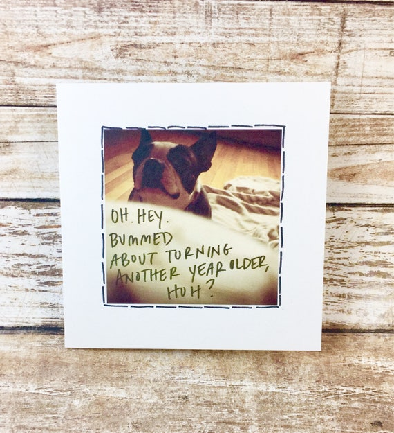 You're getting old, over the hill birthday card, boston terrier birthday card, birthday bummer
