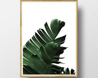 Banana Leaf Print, Leaf Print, Tropical Leaf Print, Leaf, Banana Leaf,  Tropical Decor, Tropical Wall Art, Modern Minimalist, Printable Leaf