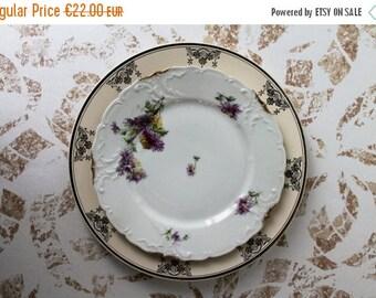 ENJOY SALES 2 plates Vintage: porcelain Limoges and DIGOIN Sarreguemines France