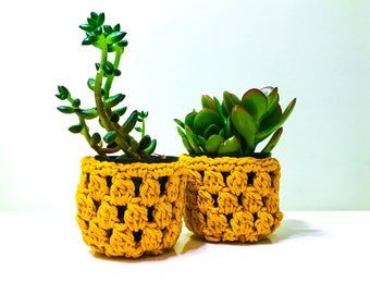 Pineapple Inspired Succulent Planter