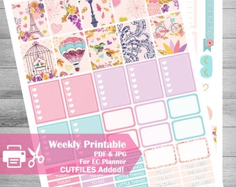Hot Air Balloon Printable Planner Stickers, Fall Printable, Paris Planner KIT, weekly kit, use with Erin Condren, Glam, Pastel, cutfiles,